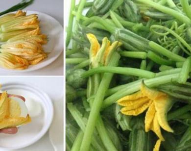 Hoa bí - Thực phẩm vàng cho sức khỏe