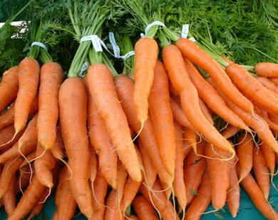 Trẻ ăn dặm có nên ăn cà rốt?